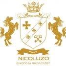 Nicoluzo E. Avatar
